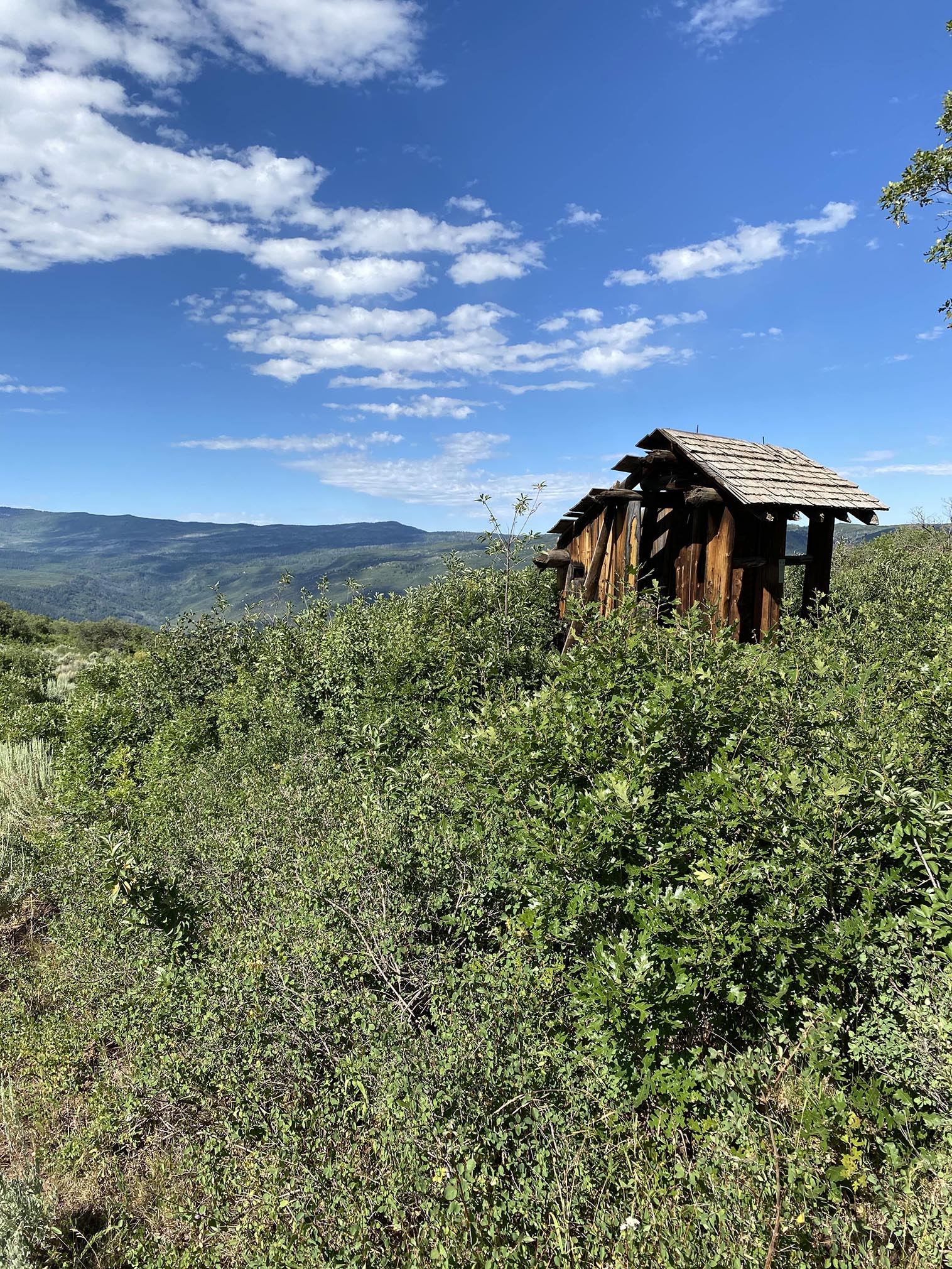 Lookout Mountain Picnic Area, CO 2021